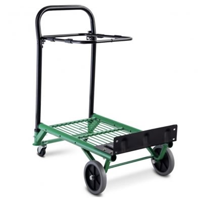Multi-functional trolley